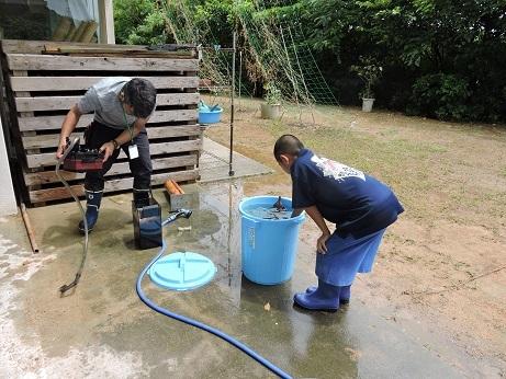 水槽ポンプ掃除DSCN9797.jpg
